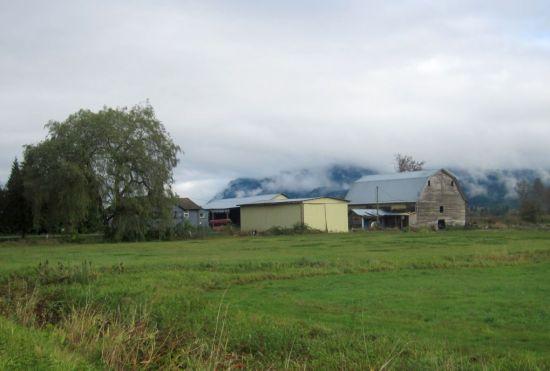Pitt Meadows, B.C.