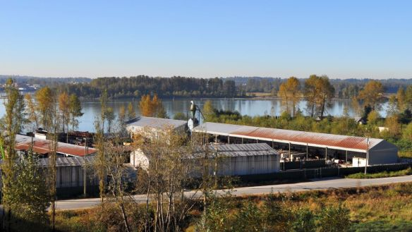 This industrial property on the Fraser, a former specialty lumber mill, has been reactivated as a metals recycling yard