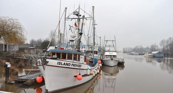 Ladner docks