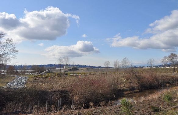 Looking across Como Creek to the proposed site of the Coquitlam waterfront village. The hillside in the left background is New Westminster.