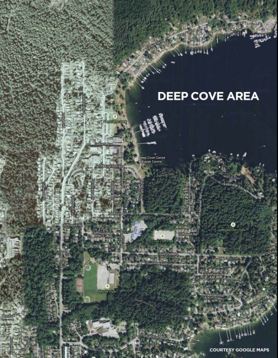 An aerial photo of Deep Cove from the municipal technical study. The commercial row is to the left of the marina.