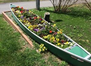 Bateau des fleurs, Midway