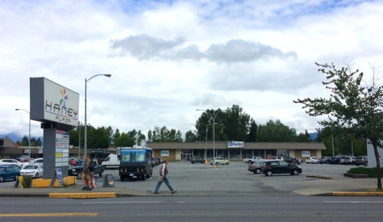 Haney Plaza in the Maple Ridge commercial core. The anchor structure, built as a Safeway supermarket, has been a liquidation outlet for 20 years; a second large retail space to the west has been leased by a series of discount retailers, and is currently vacant.