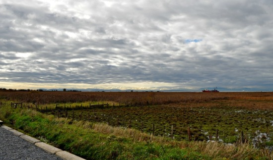 The end of the world -- looking west and south to Vancouver Island from the edge of Steveston