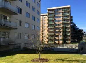Fraseropolis Kerrisdale apartments